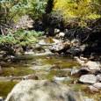 Boulder Creek Single track